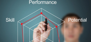 Strategic Mindset maximizes Skill, Potential and Performance intersection